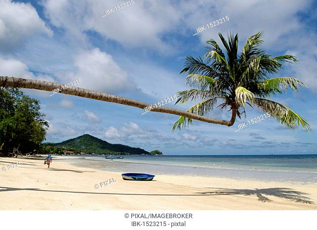 Boat under a palm tree, sandy beach, turquoise sea, island, Koh Tao Island, Thailand, Asia