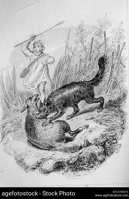 the guilty dog, florian fables illustrated by victor adam, publisher delloye, desme 1838