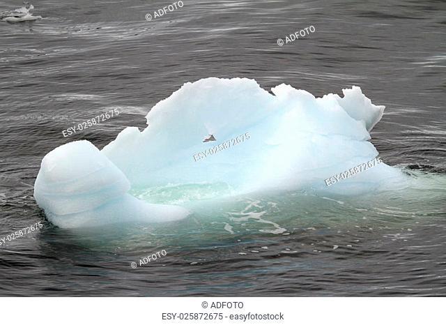 Antarctica - Iceberg Drifting In The Ocean