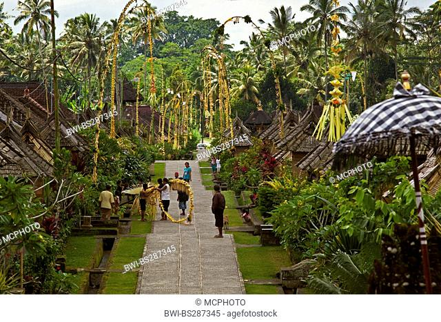 traditional penjors waysides in a village, Galungan Festival, Indonesia, Bali, Penglipuran