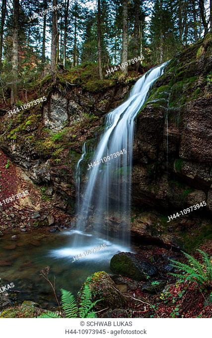 Wängibach, Waterfall, Water, Switzerland, Nature, Mountain, Stream, Mountain stream, Autumn, Forest, Tree