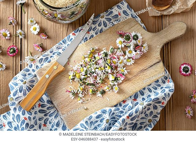Cutting up daisy flowers to prepare homemade herbal syrup against cough