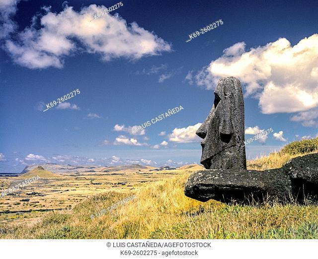Moai at Rano Raraku. Easter Island, Chile