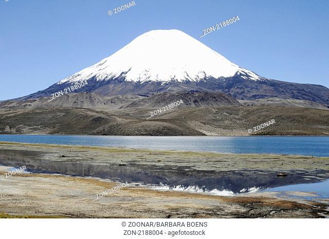 Parinacota volcano, Lago Chungara, lake, Vulkan, See, Lauca National park, Nationalpark, Norte Grande, northern Chile, Nordchile, Chile, South America