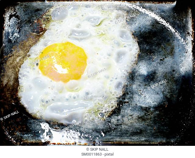An egg frying in a pan