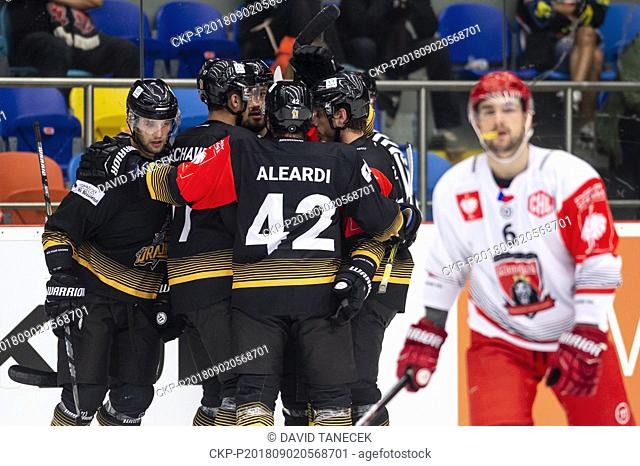 Hockey players of Rouen celebrate a goal during the Ice hockey Champions League matches group F Mountfield Hradec Kralove vs