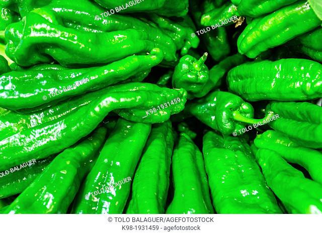 green peppers, Olivar Market, Palma, Mallorca, Balearic Islands, Spain