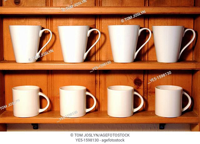 White mugs lined up on wooden shelf