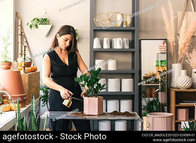 Florist watering new potted plant in the middle of her store