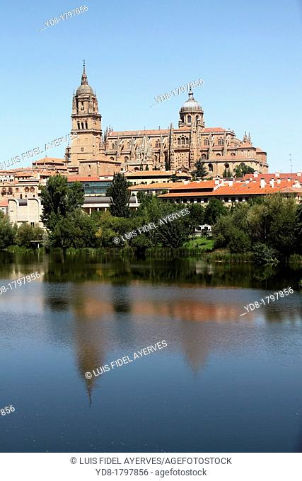 View of the Cathedral and the river Tormes, Salamanca, Castilla y Leon, Spain, Europe
