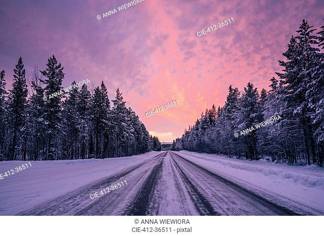 Remote winter road through snow covered forest trees against dramatic purple and pink sky, Lapland, Finland