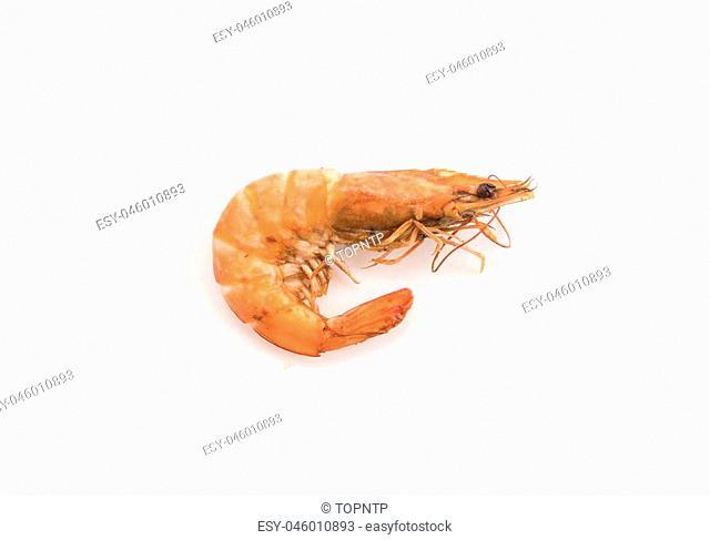fresh shrimp/prawn on white background