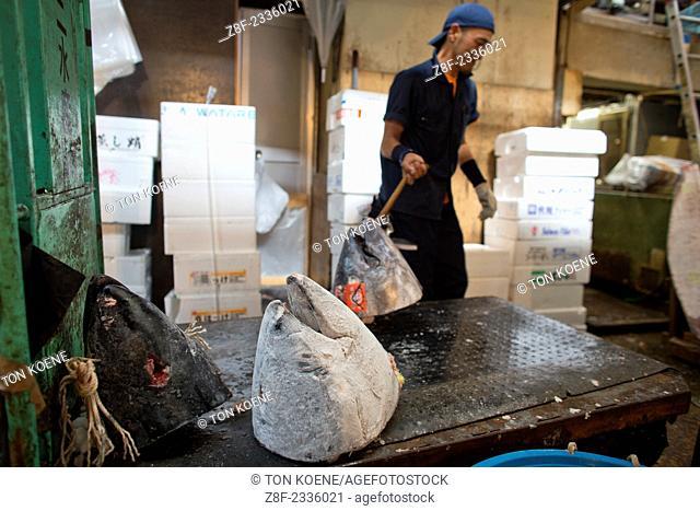 fish market in Tsukiji, Tokyo