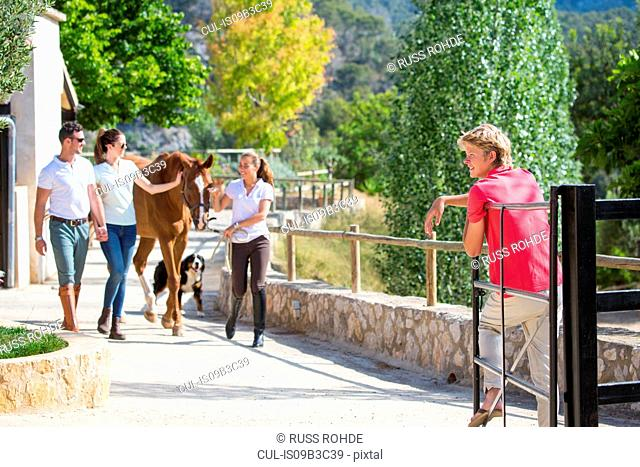 Young female groom leading horse in rural stables