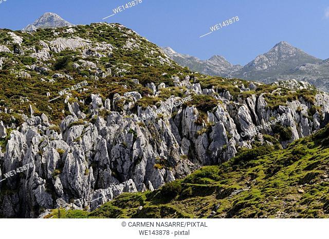Landscape of the Picos de Europa near Jous Buferrera