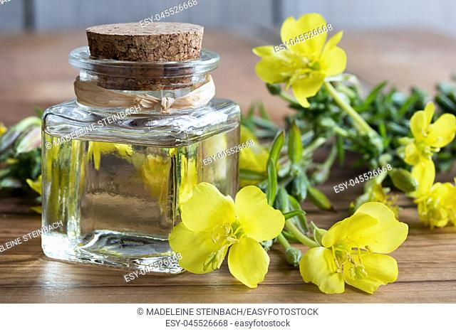 A bottle of evening primrose oil with fresh evening primrose flowers in the background