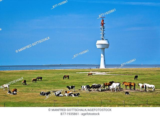 Germany, Lower Saxony, radar tower on Neuwerk Island in the Elbe estuary