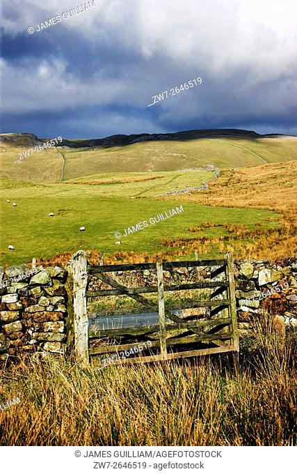 Old wooden field gate near Settle, North Yorkshire Dales, UK