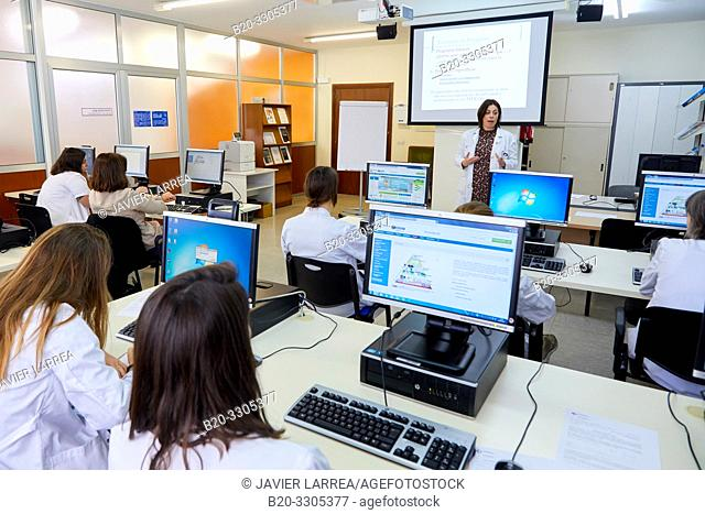 Computer training course for health professional, Library, Hospital Donostia, San Sebastian, Gipuzkoa, Basque Country, Spain