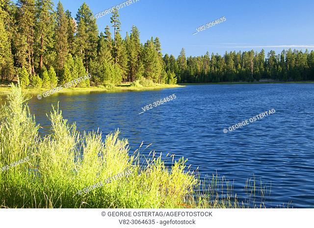 Delintment Lake, Ochoco National Forest, Oregon