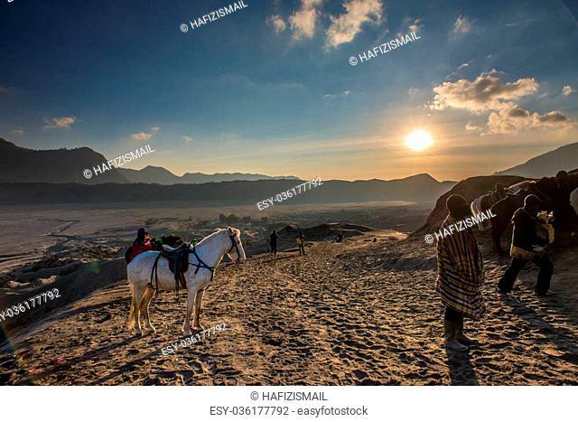Horse and Handler at Sunrise in the desert - Bromo Tengger Semeru National Park
