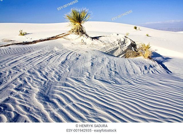 White Dunes National Monument