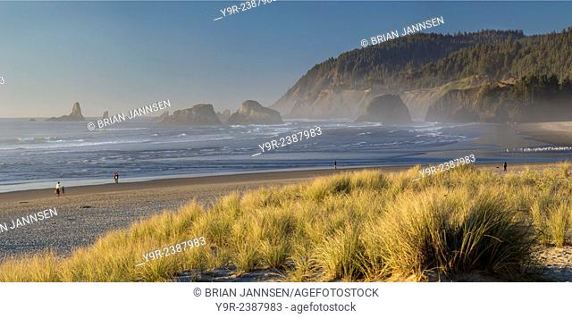 Evening sunlight over the beach and coastline at Cannon Beach, Oregon, USA