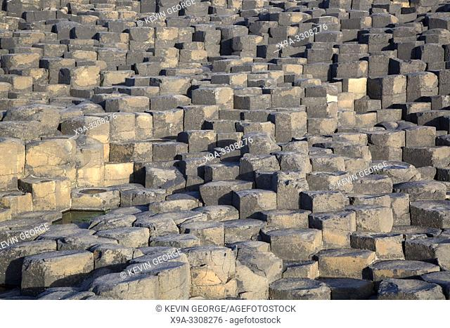 Giants Causeway; County Antrim; Northern Ireland, UK