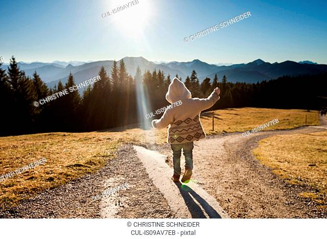 Rear view of female toddler toddling on sunlit dirt track, Tegernsee, Bavaria, Germany