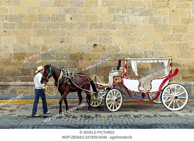 Horse carriage and driver, Guadalajara, Mexico