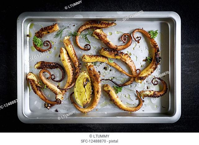 Grilled octopus with spices