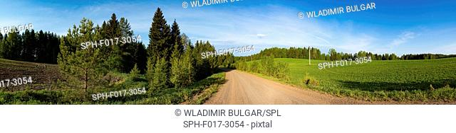 Country road, panorama