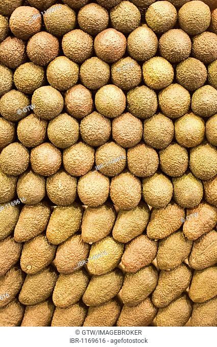 Avocados at La Boqueria market, Barcelona, Catalonia, Spain, Europe