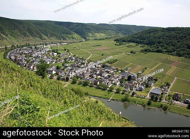 Blick vom Valwiggerberg ins Moseltal auf den Weinort Ernst, Valwig, Rheinland-Pfalz, Deutschland