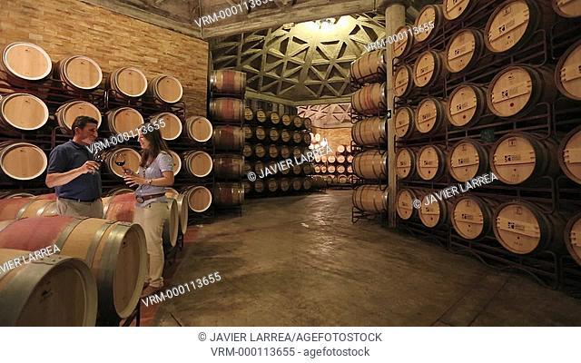 Couple tasting wine in cellar, Barrel cellar, Bodegas Olarra, Logroño, La Rioja, Spain