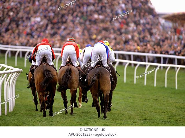 Rear view as a group of horses race round corner towards finish line