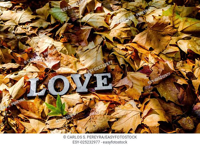 message of love with metal letters in autumn