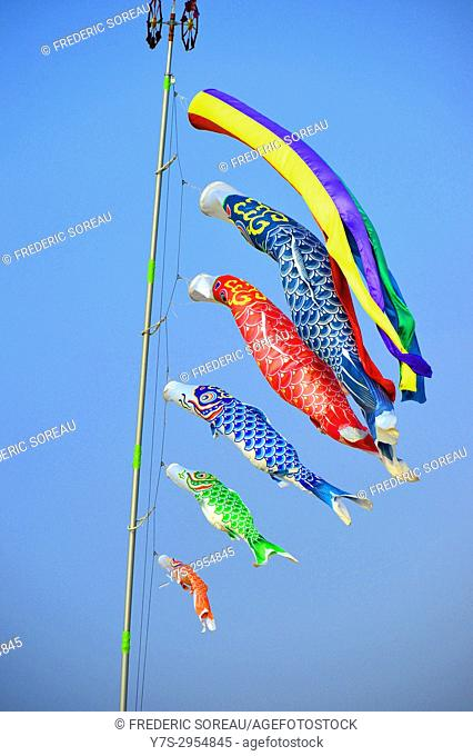 Colorful carp-shaped wind socks, Fukuoka, Japan, Asia