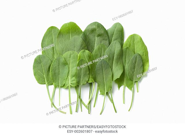 Fresh sorrel leaves on white background