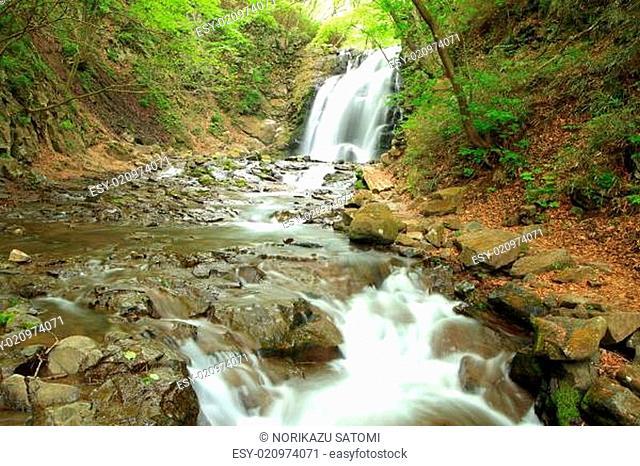 Waterfall of fresh green