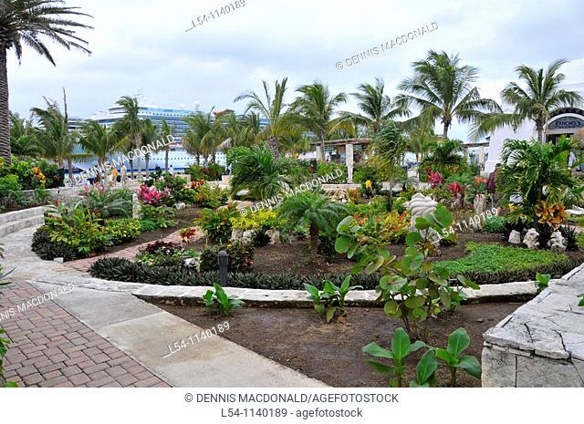 Garden area near Caribbean Cruise Ship in Puerta Maya and Cozumel Mexico