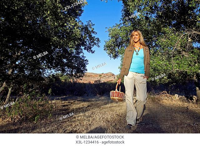 Woman pick up mushrooms, Tiermes, Soria  Castile-Leon  Spanish