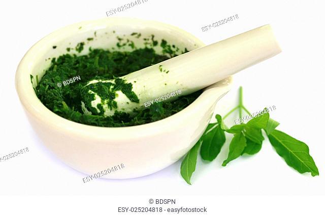 Vitex Negundo wtih mortar and pestle