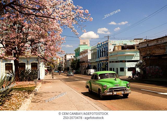 Old american cars on the street, Vedado, Havana, Cuba, Central America