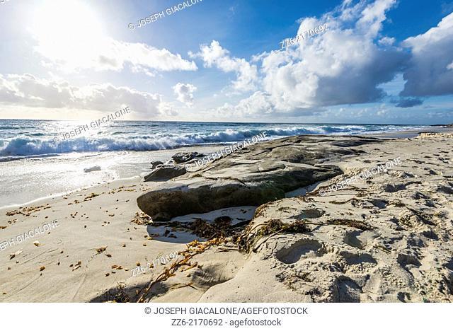 Windansea Beach. La Jolla, California, United States