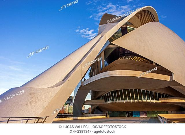Palace of Arts 'Reina Sofia',City of Arts and Sciences.Valencia. Spain