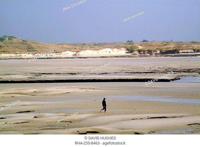 Walker on sands at low tide, Portbail, Cotentin Peninsula, Manche, Normandy, France, Europe