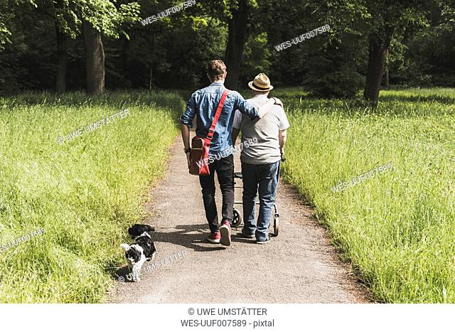 Back view of grandfather walking with grandson and dog in nature