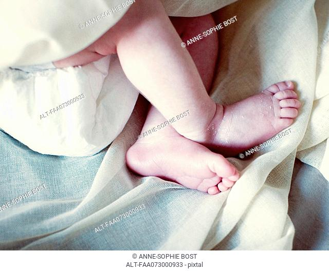 Legs of new born baby, cropped