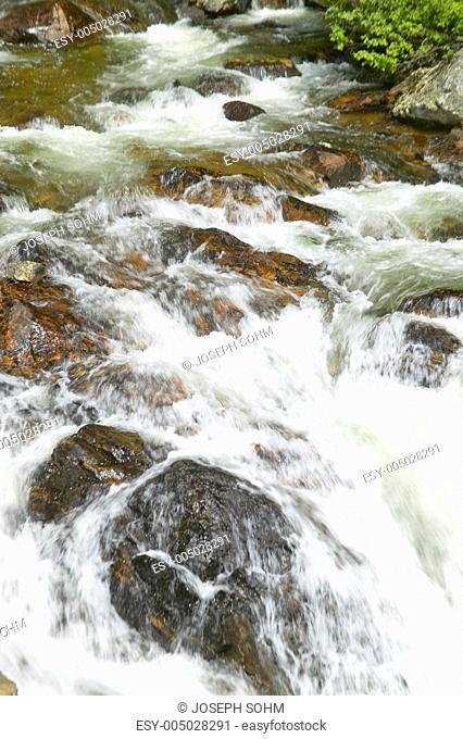 Running water beneath Pines as creek runs through Payette national Forest near McCall Idaho